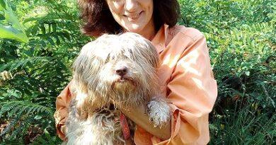 """""""Non siamo solo cagnolini"""": la filosofia vista da un cane"""